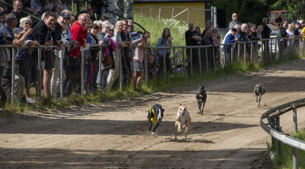 Gästrike Hundkapplöpningssällskap Sweden